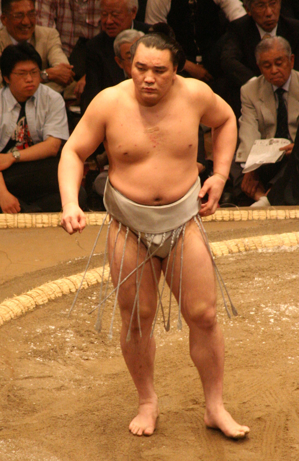 Sumo_May09_Harumafuji