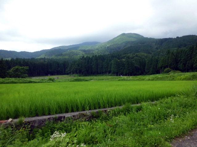 rokuroshi2